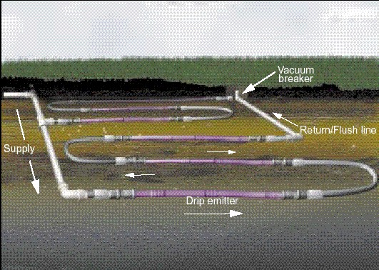 disposal installation diagram subsurface drip systems  subsurface drip systems